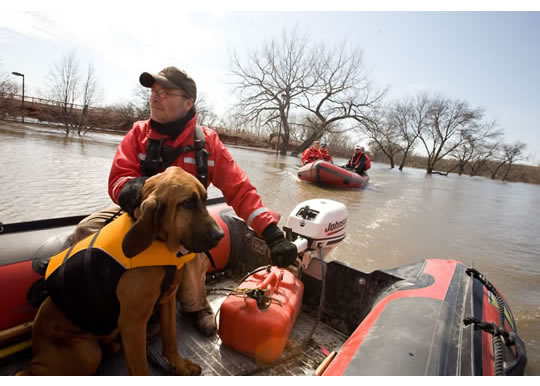 0FEMA_-_40689_-_Valley_Water_Rescue_member,_Mike_Knorr_and_search_dog,__Barnaby__in_-opt